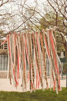 a backdrop of long streamers hung from one side of tree to the other.