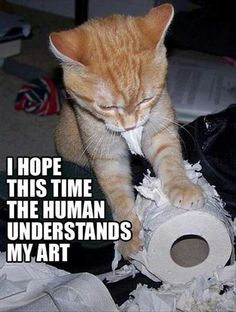 Crohn's Cat's interpretation of modern art... that is totally like my cat blaze, looks and acts just like her!