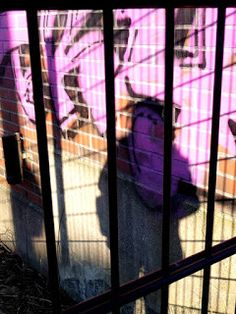 Travelling with camera obscura: I´m pink apewoman watching street art