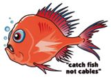 Protecting New Zealand's undersea cables Island 2, Types Of Fish, Image News, Maui, New Zealand, Cable, Fishing, Number, Sea