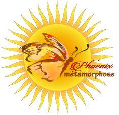 Formation en Métamorphose