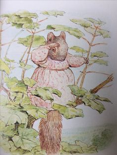 From 'The Tale of Timmy Tiptoes' by Beatrix Potter published by the Folio Society. It's a gorgeous set of the 23 stories, with gold gilded pages, lovely illustrations and a blue case to keep them.