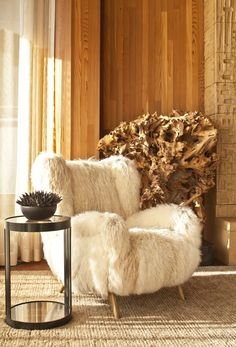 I like the furry chair...it's funky but might be comfy.....the rest of the room ?....not so much other than sunlight coming through the large window