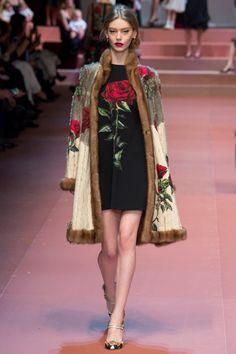 Dolce & Gabbana F/W 2015-16