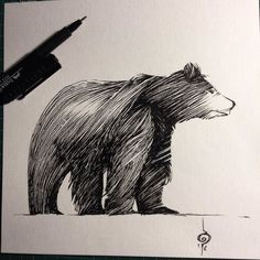 "Ben BASSO on Twitter: ""#inktober #16 #bear #inktober2016 #ink #dailydoodle #inking #illustration #sketch #artoftheday #grizzly https://t.co/9LcwgKNjBC"""