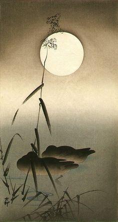 Sleeping Ducks - Ohara Koson (1877-1945) (moon) Japan.                                                                                                                                                                                 More