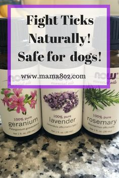 Prevent ticks naturally using essential oils! Safe for humans and dogs. Tick Repellent For Humans, Natural Tick Repellent, Ticks On Humans, Ticks On Dogs, Young Living Oils, Young Living Essential Oils, Tick Bites On Dogs, Essential Oils For Fleas, Bio Oil Stretch Marks