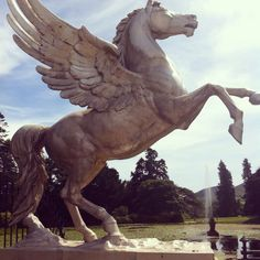 Fabulous winged horse statue at Powerscourt, overlooking the lake and its spectacular water feature.
