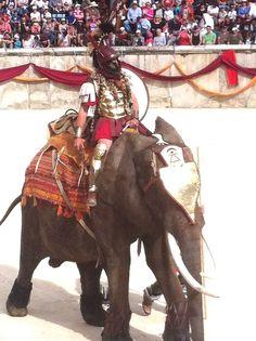 Hannibal  - Grands Jeux Romains Nîmes 2015
