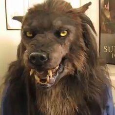 Maske Halloween, Halloween Masks, Fall Halloween, Halloween Crafts, Halloween Decorations, Halloween Cosplay, Halloween Vampire, Animal Head Masks, Animal Heads
