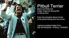 Pitbull Terrier - Black Cat White Cat - Srdjan Todorovic Dance Mix by Ravi