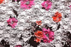 Stretch Printed Lace (Black/Fuchsia/Multi)