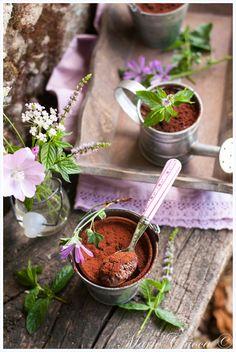 Petits pots légers de « mousse au chocolat du jardinier »  (Avec des courgettes dedans… mais chuuut !)