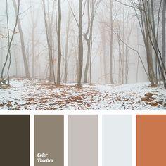 fog color
