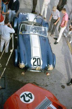 AC Cobra • Sebring 1965
