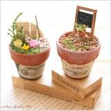 【作家さん×Acorn-Styleコラボ*】ミニチュア雑貨ブリキGarden:オシャレかわいい雑貨のお店 Acorn-Style* Planter Pots