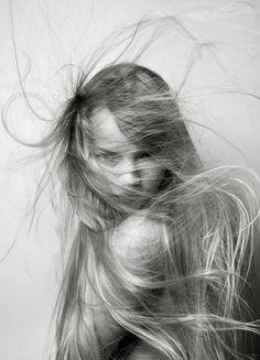 hairstorm_Louis Park