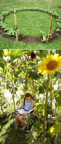 Grow a sunflower house for the kids to play in. // 31 Cheap And Easy Backyard Ideas That Are Borderline Genius ideas kids Grow a sunflower house for the kids to play in. Outdoor Projects, Garden Projects, Art Projects, Dream Garden, Home And Garden, Herb Garden, Summer Garden, Garden Art, Garden Kids