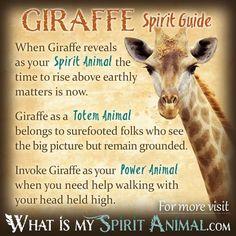 Giraffe Spirit Totem Power Animal Symbolism Meaning 1200x1200