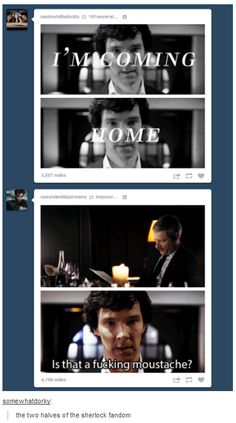 Poor John... We are a divided Fandom. But not mean...we obsess over different aspects but to our fellow Sherlockian we are very kind to each other, it's why I love being part of this Fandom. But man is this accurate.