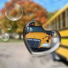 Future School, School Bus Driver, Wheels On The Bus, School District, Transportation, Snow, Eyes, Let It Snow