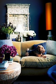 abigail ahern dark blue living room                                                                                                                                                                                 More