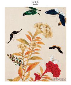 꽃과 나비에 반하다