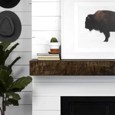 Rough Hewn Fireplace Aged Oak Mantel Shelf - (As Is Item) - aged oak), Brown, Dogberry Collections Fireplace Shelves, Shiplap Fireplace, Mantel Shelf, Fireplace Design, Modern Fireplace Mantels, Mantles, Fireplaces, Oak Mantel, Wood Mantle