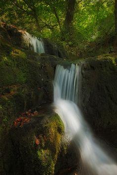 https://flic.kr/p/P6o8Eb | Colores asturianos de principios de Septiembre | En el norte de España, en las cascadas asturianas, remanso de paz y tranquilidad.