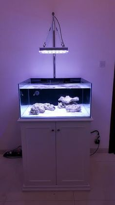 What can one Atlantik Compact LED lighting  do for Your Tank, plenty!!  Our client Daniel in Indonesia decided to use one Atlantik Compact for his new install. As you can see there are no dark areas in Daniel's tank using the Atlantik Compact, just plenty of PAR and intensity and the Atlantik …