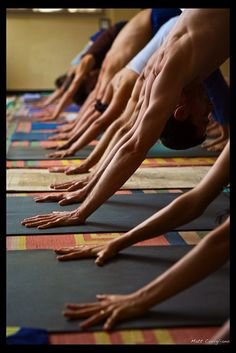 Ashtanga Yoga institute, Mysore, India