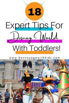 18 Expert Tips For Disney World With Toddlers