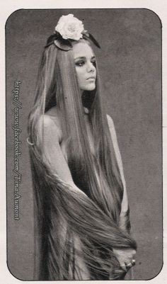 """1960s Cult / Style Icon: Tina Aumont sometimes referred to as Maria Christina """"Tina"""" Aumont or Tina Marquand   Pinned from www.thankyouforbeingsophisticated.com"""