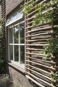 Dream Garden, Home And Garden, Garden Trellis, Bamboo Garden, Garden Structures, Garden Projects, Garden Inspiration, Outdoor Gardens, Backyard Landscaping