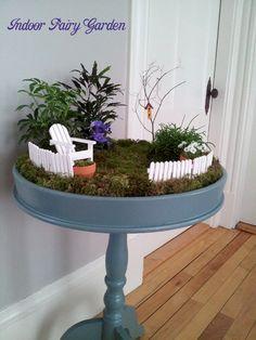 Indoor fairy garden.