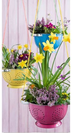 Diy garden art crafts flower pots Ideas for 2019 Diy Planters Outdoor, Diy Hanging Planter, Garden Planters, Hanging Baskets, Planter Ideas, Outdoor Plants, Hanging Pots, Hanging Gardens, Balcony Garden
