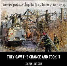 They Saw The Chance And Took It...#funny #lol #lolzonline