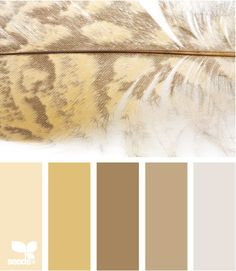 Feather Tints by Design Seeds Colour Pallette, Color Palate, Colour Schemes, Color Combos, Design Seeds, Colour Board, World Of Color, Color Stories, Color Swatches