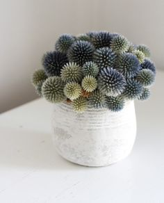 Modern floral arrangement& Mound by Flores del Sol on Etsy. Love the wide range of muted colors& greys, blues, greens and yellows. Deco Floral, Arte Floral, Floral Design, Mini Plantas, First Day Of Spring, Happy Spring, Colorful Roses, Cactus Y Suculentas, Cacti And Succulents