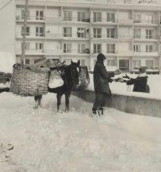1964 / İstanbul Karlı bir günde Basın Sitesi'nde ekmek satan seyyar esnaf...