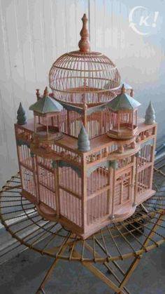 .Impressive cage.                t                                                                                                                                                     More