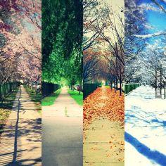 4 seasons of my street. Took me almost a year.