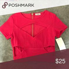 Tobi Cutout Crop Top Tobi brand new cut out crop top. Zipper closure in back. Never worn!! Tobi Tops Crop Tops