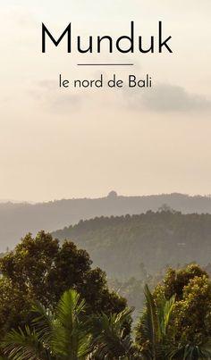 Escapade à Munduk, dans le nord moins touristique et plus authentique de Bali. Au programme : randonnées dans la forêt, cascades, lacs, rizières...