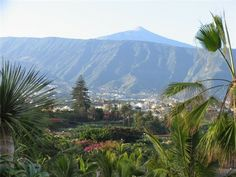 Valle La Orotava