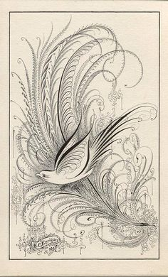 Anne Elser: Birds & Flourishing Calligraphy Workshop with Bill Kemp Flourish Calligraphy, Calligraphy Drawing, Copperplate Calligraphy, Calligraphy Letters, Penmanship, Caligraphy, Writing Art, Arabesque, Pyrography