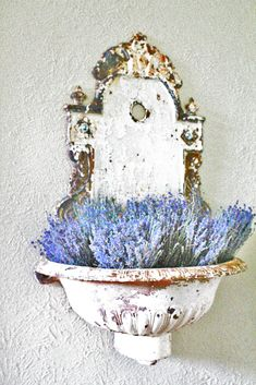 Old fountain with hyacinths.