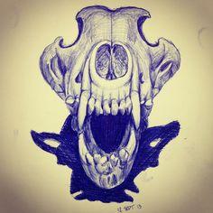 Wolf skull sketch. Blue pen.