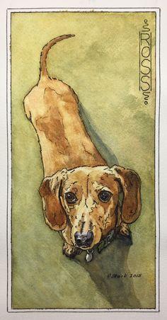 """Ross"" by V. Stark #wiener #dachshund #watercolor #dog #art"