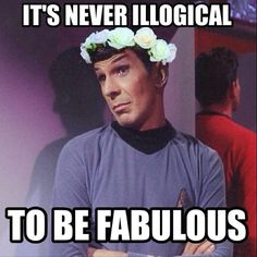 I love how everyone is so focused on the hilariousness of Spock in a flower crown that no one acknowledges the guy in the red shirt He's just gonna die anyway